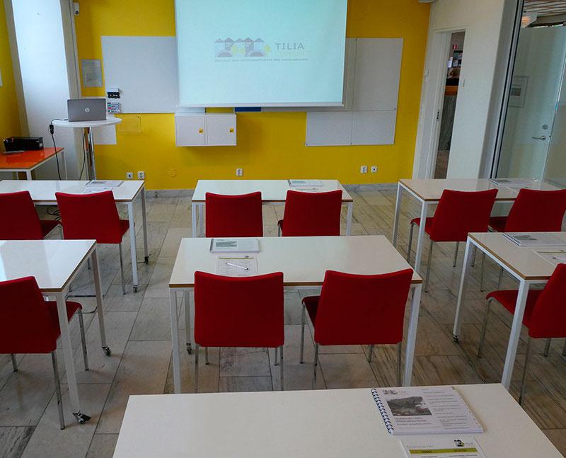 Tilia Consult, allmänt om tjänster och kundgrupper, foto M. Ullen